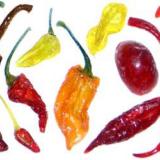 come-congelare-i-peperoncini peperoncini canditi prodotti tipici calabresi