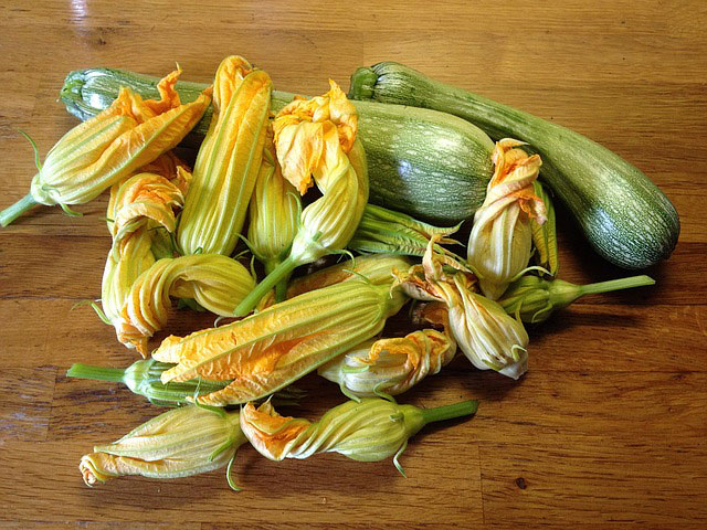 fiori di zucca ripieni