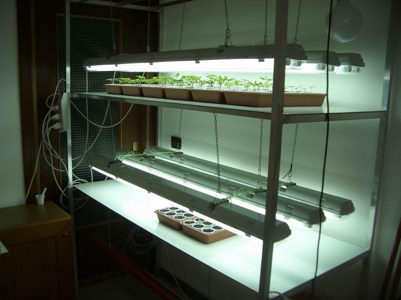 led-coltivazione-indoor