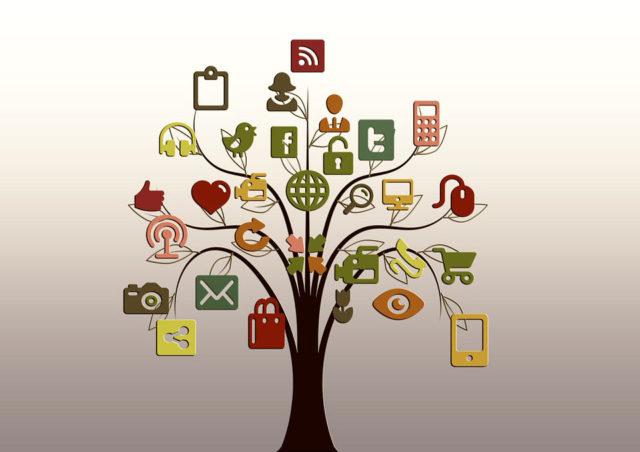 socialtree
