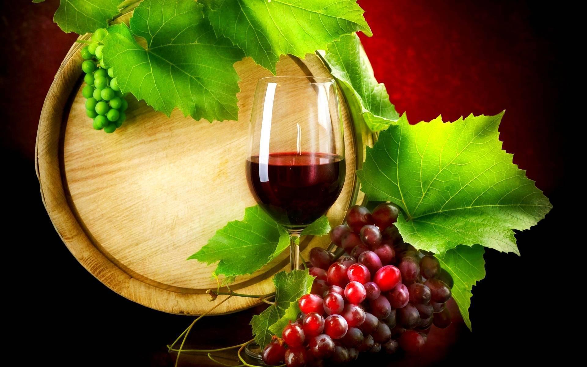 programma_sagra_dell_uva_e_del_vino_donnici_2015